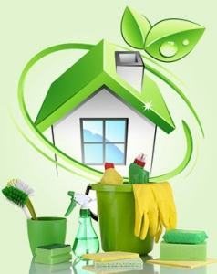 Sir Clean - Cleaning Division Special Green Friendly