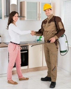 Sir Clean - Cleaning Division After Renovation, Pest Control